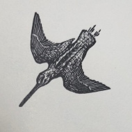 Snipe, wood engraving by Marie Hartley